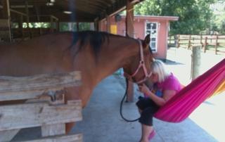 horsehammock1
